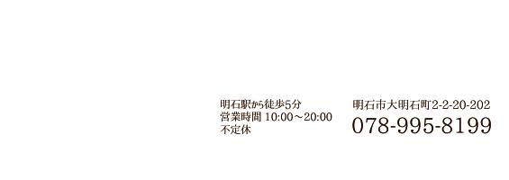 078-955-8199
